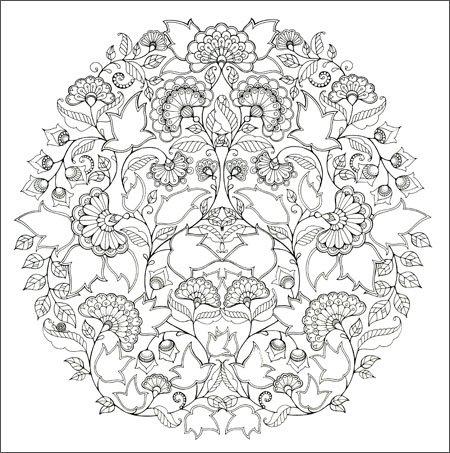 秘密花园:手绘涂色书探索奇境