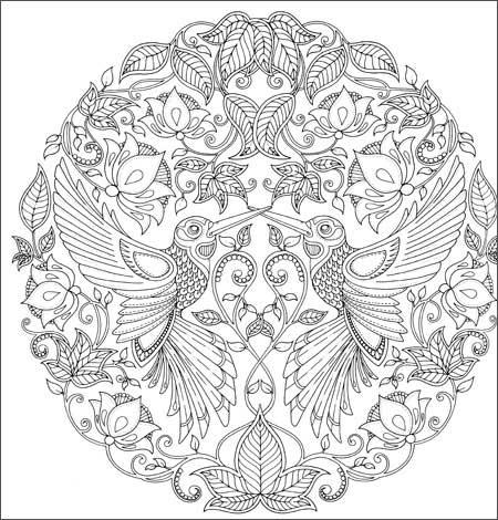 《秘密花园:一本探索奇境的手绘涂色书》插图