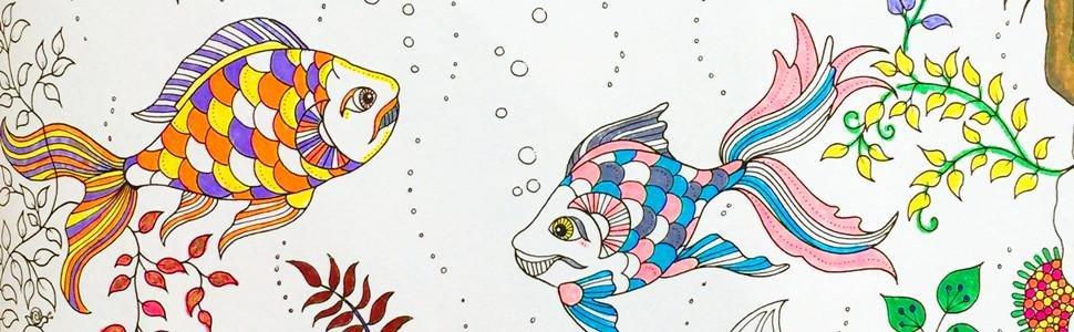《秘密花园:一本探索奇境的手绘涂色书》读者作品